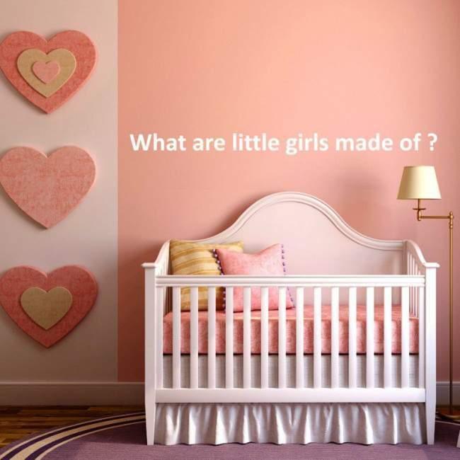 Αυτοκόλλητα τοίχου παιδικά What are little girls made of ?