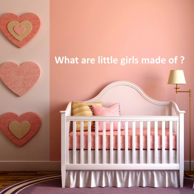 Kids wall stickers What are little girls made of ?