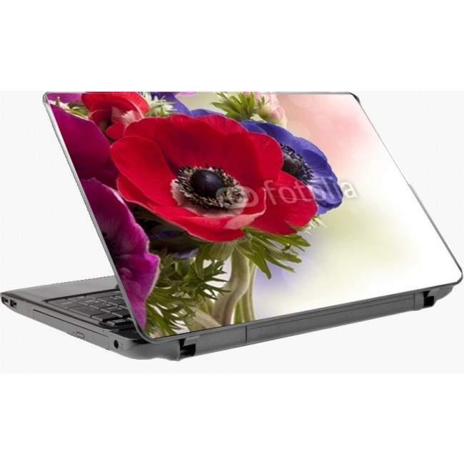Anemone rossoαυτοκόλλητο laptop