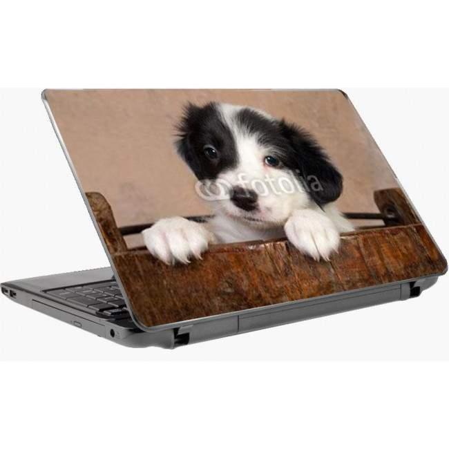 Κουταβάκι στο σπιτάκι τουαυτοκόλλητο laptop