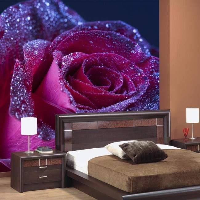 Ταπετσαρία τοίχου Purple rose drops