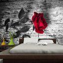 Ταπετσαρία τοίχου Red passion