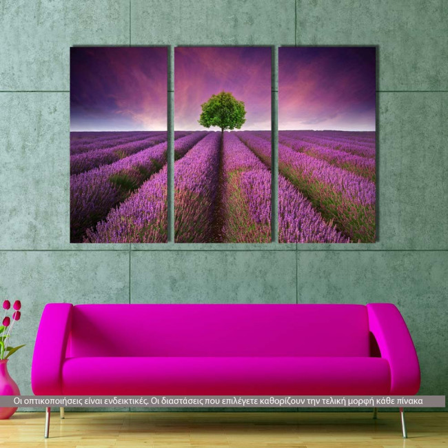 Canvas print Stunning lavender field,  3 panels