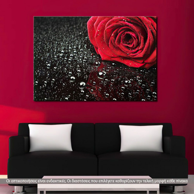 Canvas print Rose with water drops