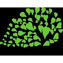 Σύνθεση με φύλλα καρδιές λαχανί,  αυτοκόλλητο τοίχου, κοντινό