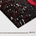 Canvas print Rose with water drops, detail