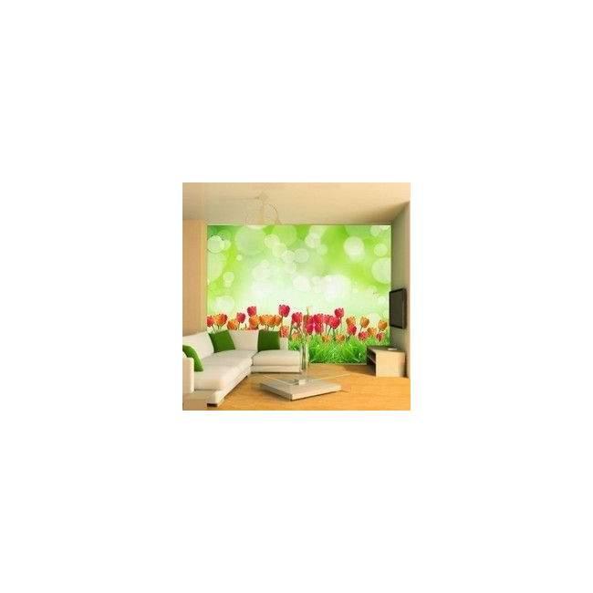 Wallpaper Tulips field