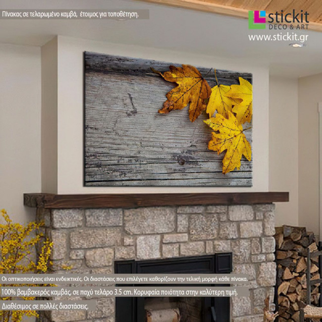 Canvas print Maple and leaves