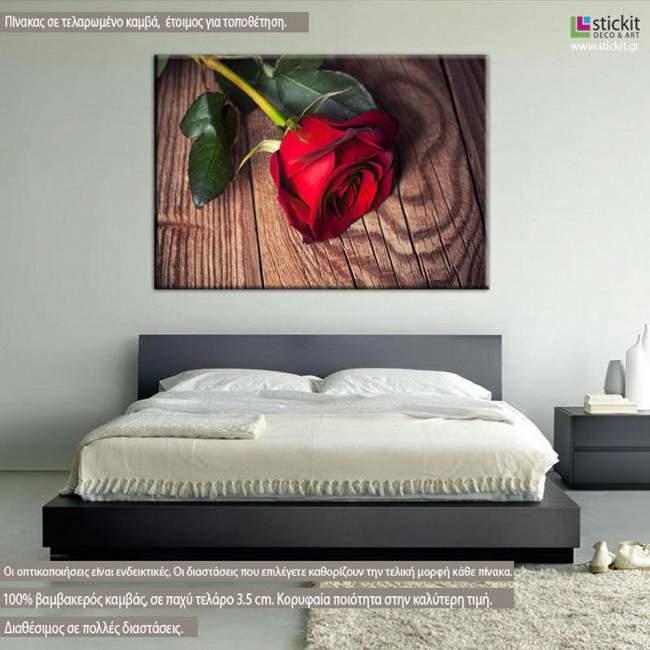 Πίνακας σε καμβά Τριαντάφυλλο, Red rose