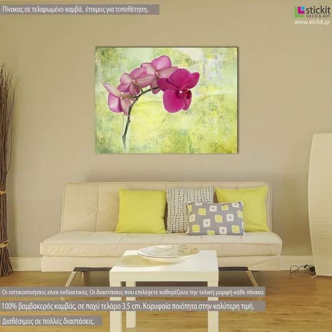 Πίνακας σε καμβά Ορχιδέα, Pink orchid