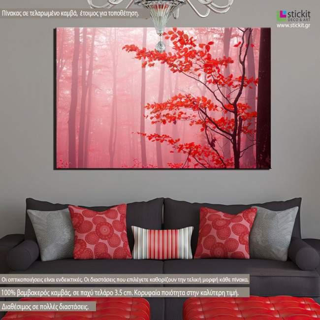 Canvas print Forest magic mist