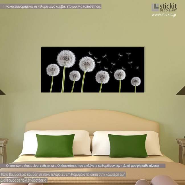 Πίνακας σε καμβά Dandelions black & white, πανοραμικός