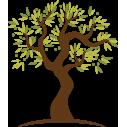 Lime tree, εναλλακτικά χρώματα 2, αυτοκόλλητο τοίχου, λεπτομέρεια