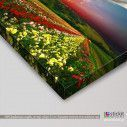 Canvas print Colorful nature, side