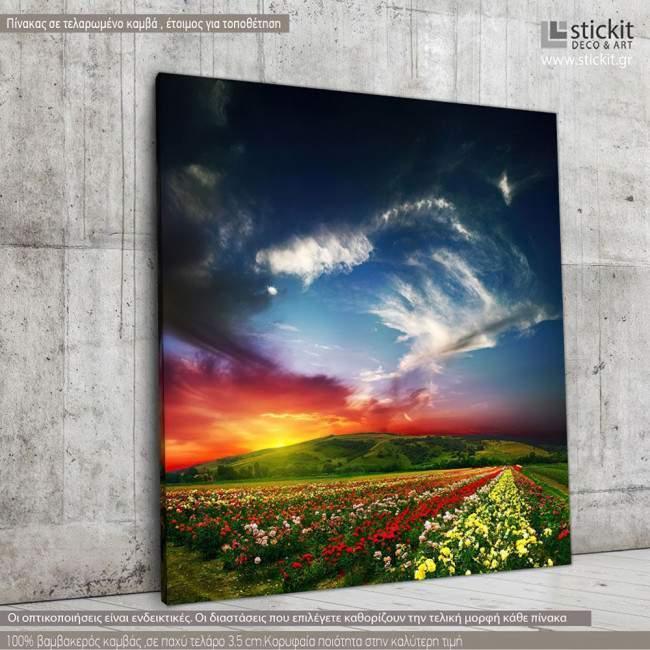 Canvas print Colorful nature