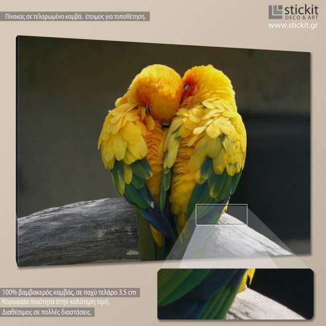 Canvas print Lovebirds
