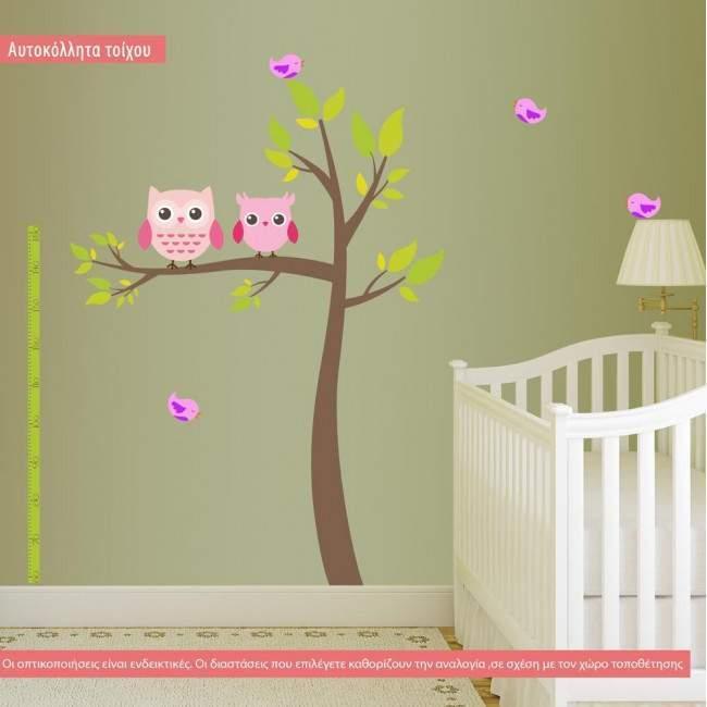 Αυτοκόλλητα τοίχου παιδικά κουκουβάγιες υψομετρητής, My owl friends