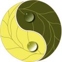 Wall stickers Yin and Yang, earthy