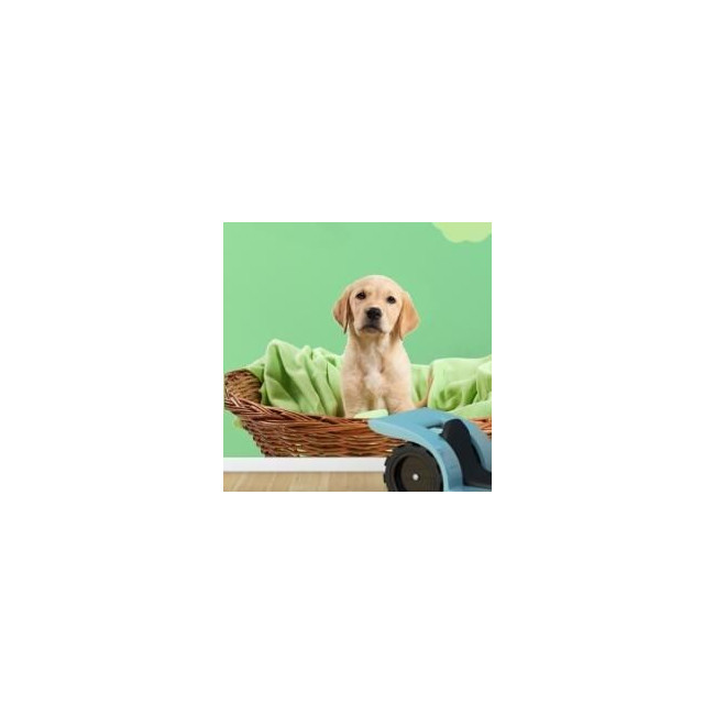 Kids wall stickers Puppy in his basket