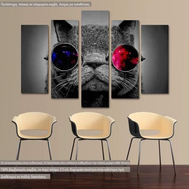 Πίνακας σε καμβά Cat and the cosmos, πεντάπτυχος
