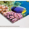 Coral reef,  τρίπτυχος πίνακας σε καμβά, λεπτομέρεια