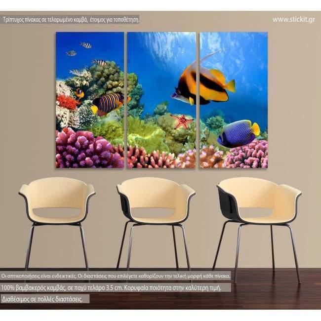 Πίνακας σε καμβά Coral reef, τρίπτυχος