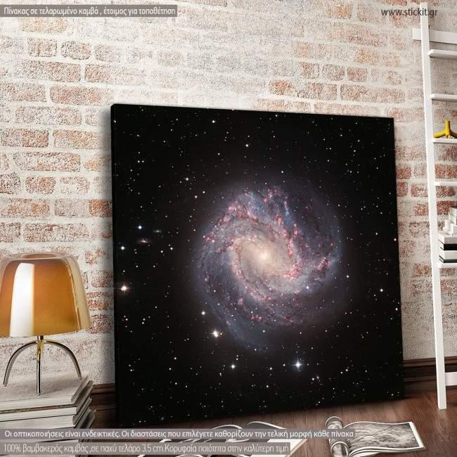 Πίνακας σε καμβά M83 galaxy