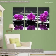 Πίνακας σε καμβά Orchids on water, τρίπτυχος