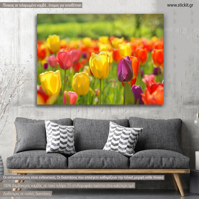 Canvas print, Tulips