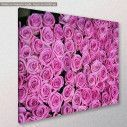 Canvas print, Roses background, side