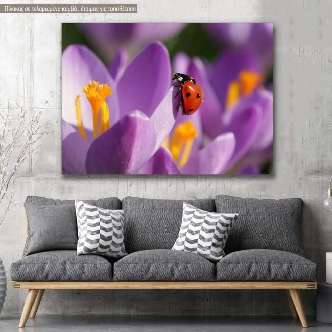 Canvas print, Spring