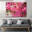 Canvas print, Crabapple Blossom