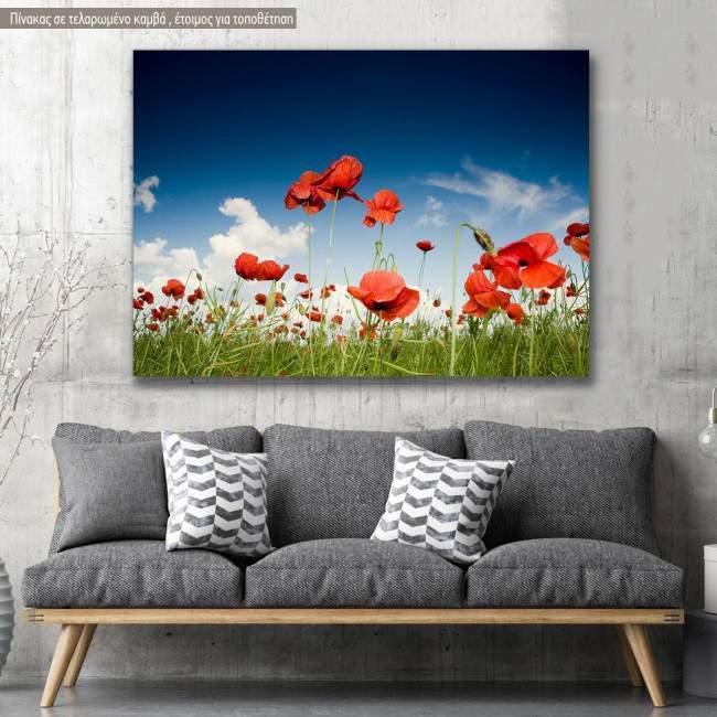 Πίνακας σε καμβά Παπαρούνες, Field with poppies under dark sky