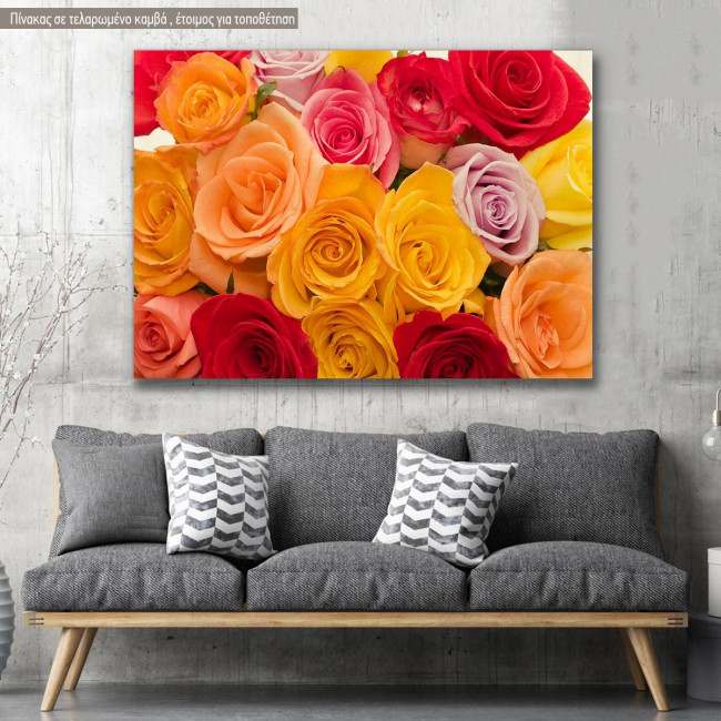 Canvas print, Variety of roses