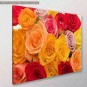 Canvas print, Variety of roses, side