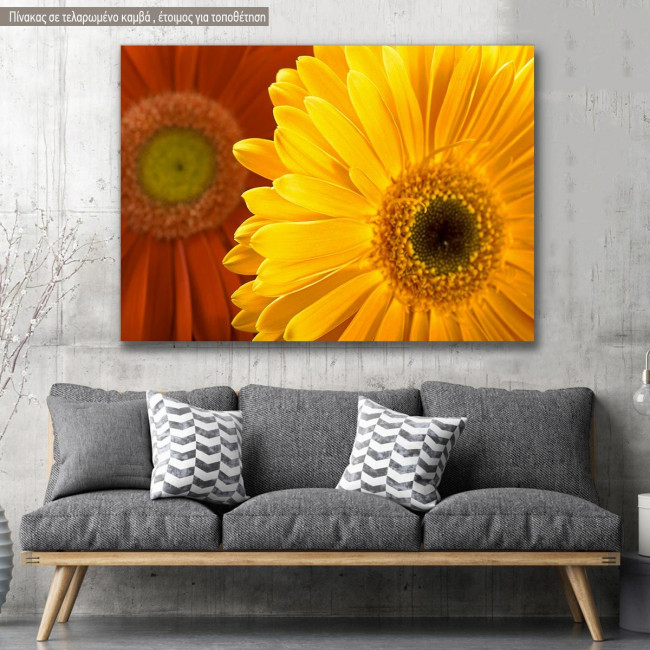Canvas print, Yellow and red daisy