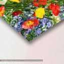 Canvas print , Colorful flower meadow, detail
