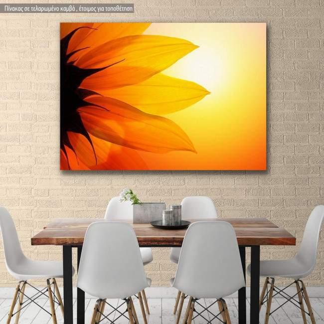 Canvas print, Sunflower at sunset