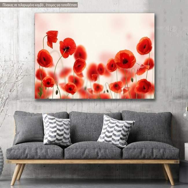 Πίνακας σε καμβά Παπαρούνες, Poppy field
