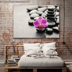 Πίνακας σε καμβά Ορχιδέα, Orchid stones
