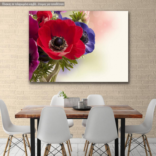Canvas print Red anemone
