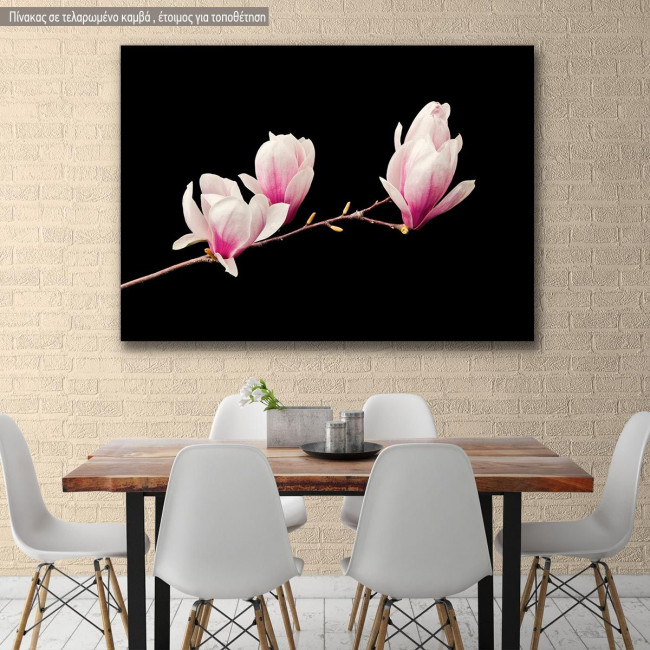 Canvas print Pink magnolia