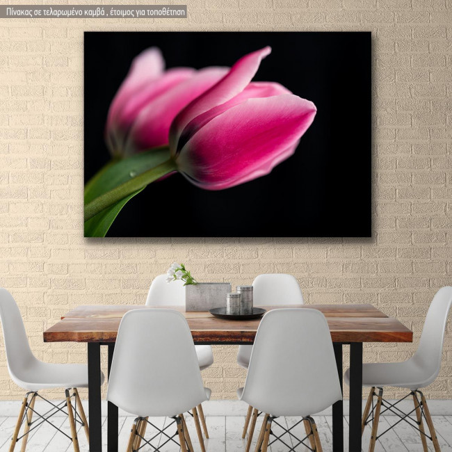Canvas print Tulips with black background