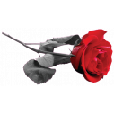 Wall stickers Red rose
