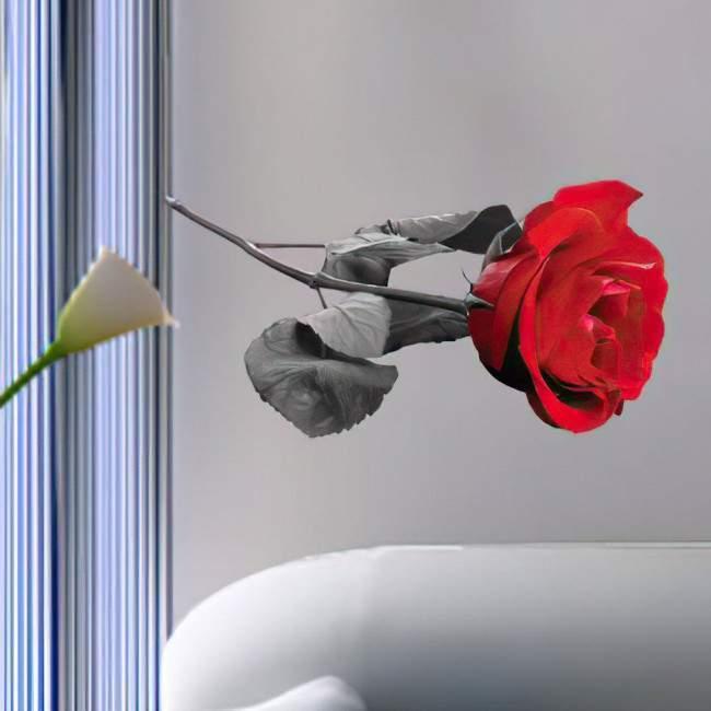 Αυτοκόλλητο τοίχου κόκκινο τριαντάφυλλο, φωτορεαλιστικό