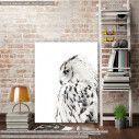Canvas print White owl