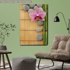 Πίνακας σε καμβά Ορχιδέα, Pink orchid and gray stones