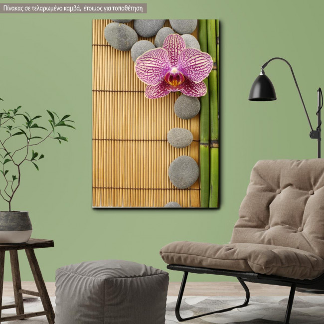 Canvas print  Pink orchid and gray stones