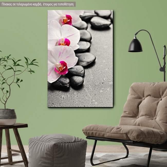 Πίνακας σε καμβά Ορχιδέα, Orchid spa stones