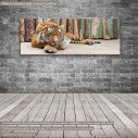 Canvas print The tiger, panoramic